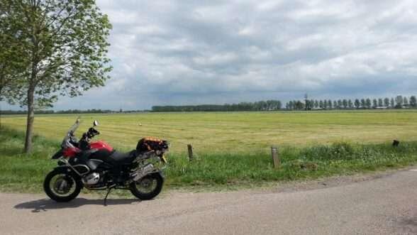 Ooievaars in het veld nabij Herwijen / A15 (Nieuwe Steeg / Mert)